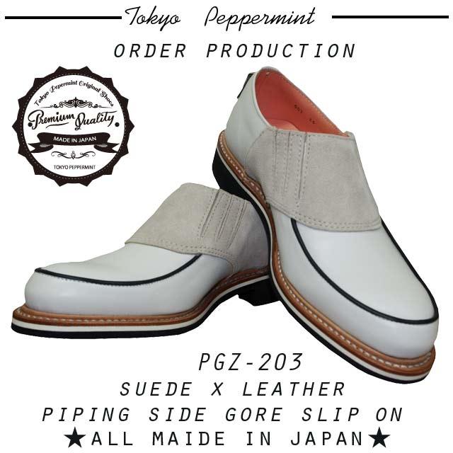 PGZ-203-2