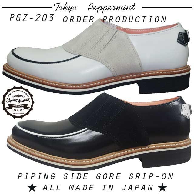 PGZ-203-3