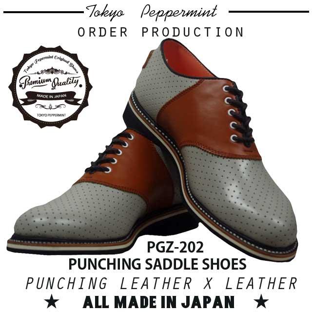 PGZ-202GBR-1