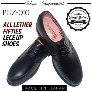 PGZ-010-1